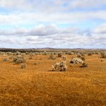 Outback Panorama SLIDER 3