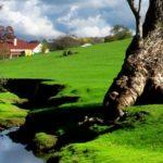 bigstock-A-rural-South-Australian-lands-15654929